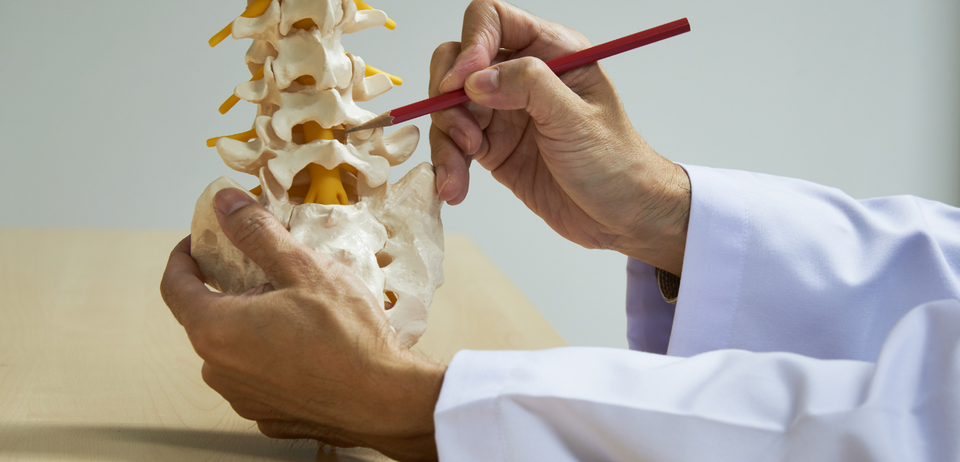 Pain, Subluxation, and Chiropractic